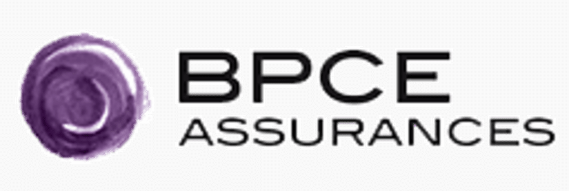 bpce-kynapse-conseil-digital-data